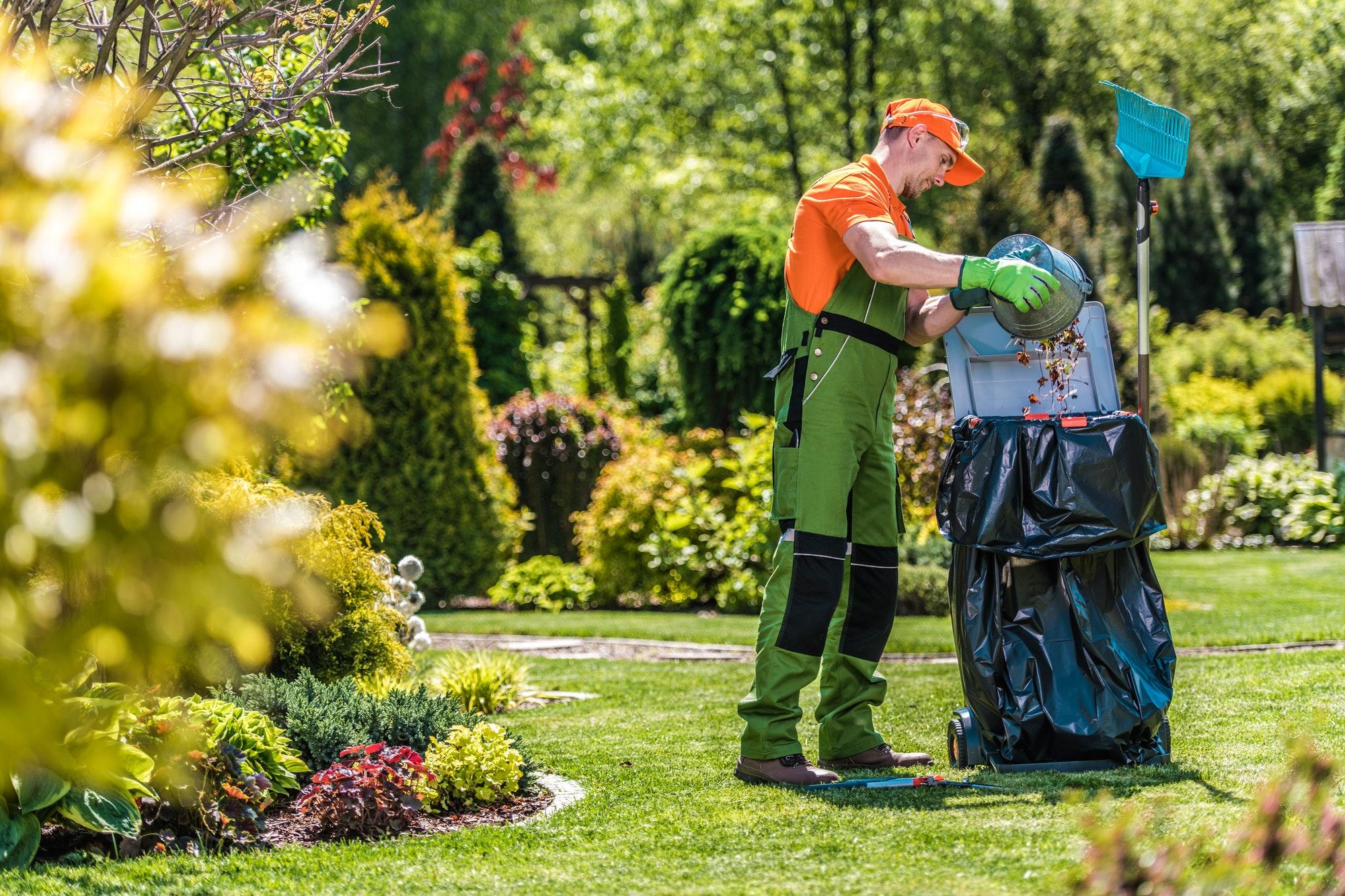 Summer Garden Maintenance